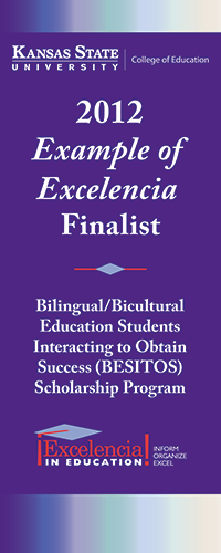 Example of Excelencia banner